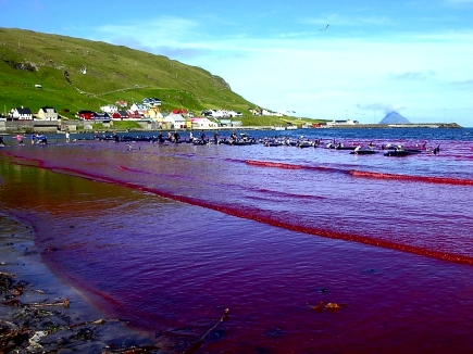 Hvalba beach, Faroe Islands
