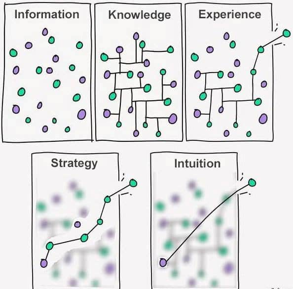 information-knowledge-experience-strategy-intuition-connaissance-strategie